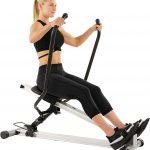 Sunny Health & Fitness Incline Full Motion